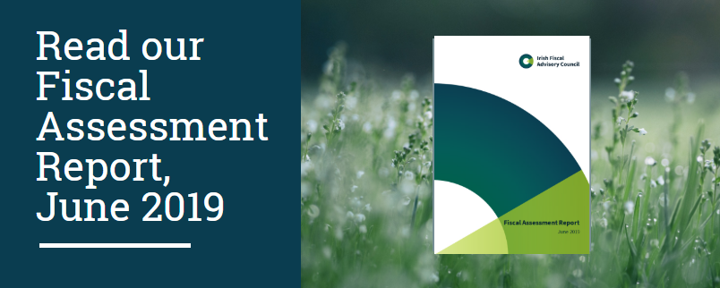 Fiscal Assessment Report June 2019